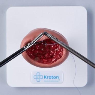 Fibroidectomy skills practising