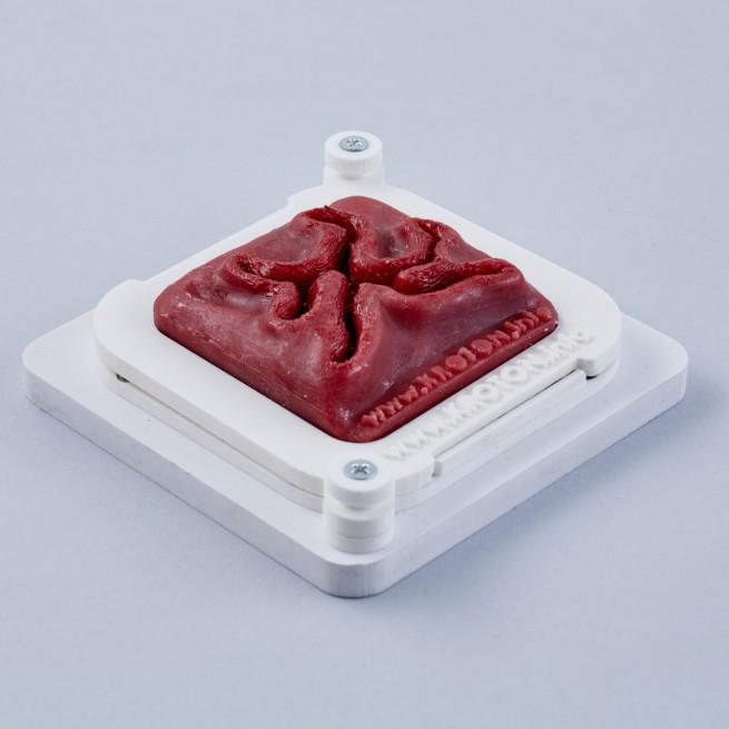 Wound for laparoscopic suturing training